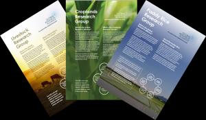 2016 RG brochures