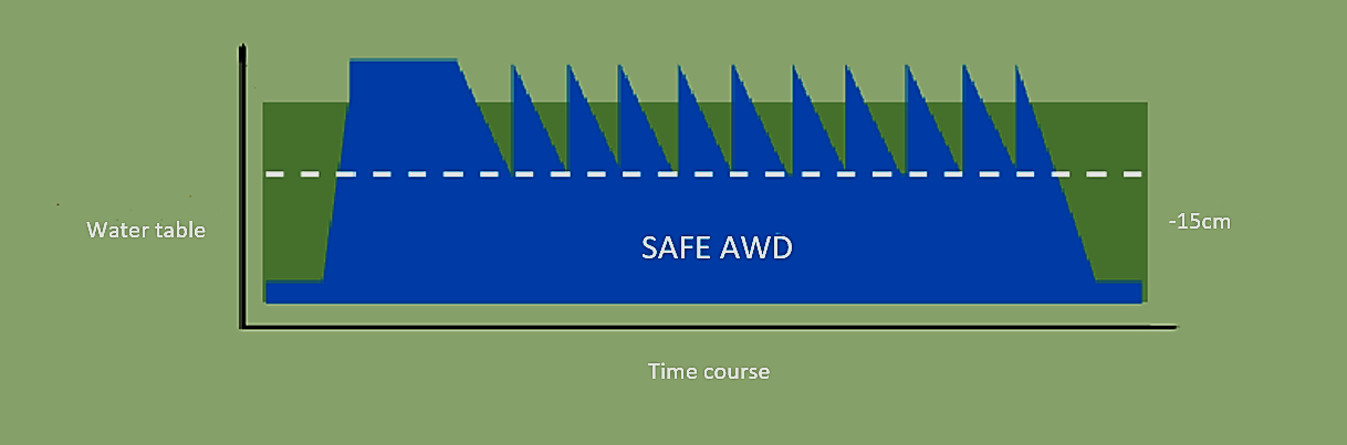 AWD diagram