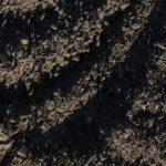 Croplands 3 detail