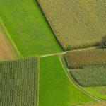 croplands-4-92145430